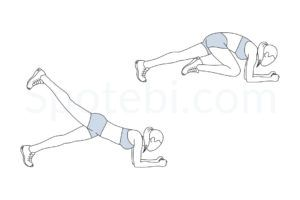 abs and obliques exercises  workout guide hip flexor