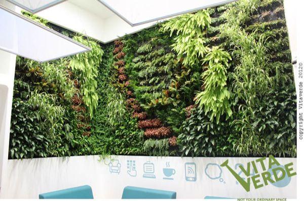 Jard n vertical en unas oficinas de tesal nica las for Oficinas bancarias abiertas por la tarde
