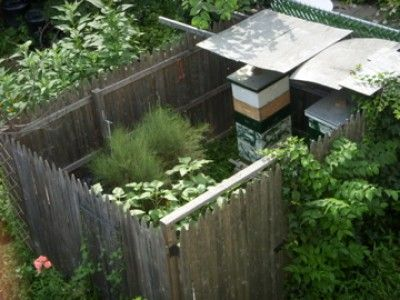 Backyard Beehives   Someday!