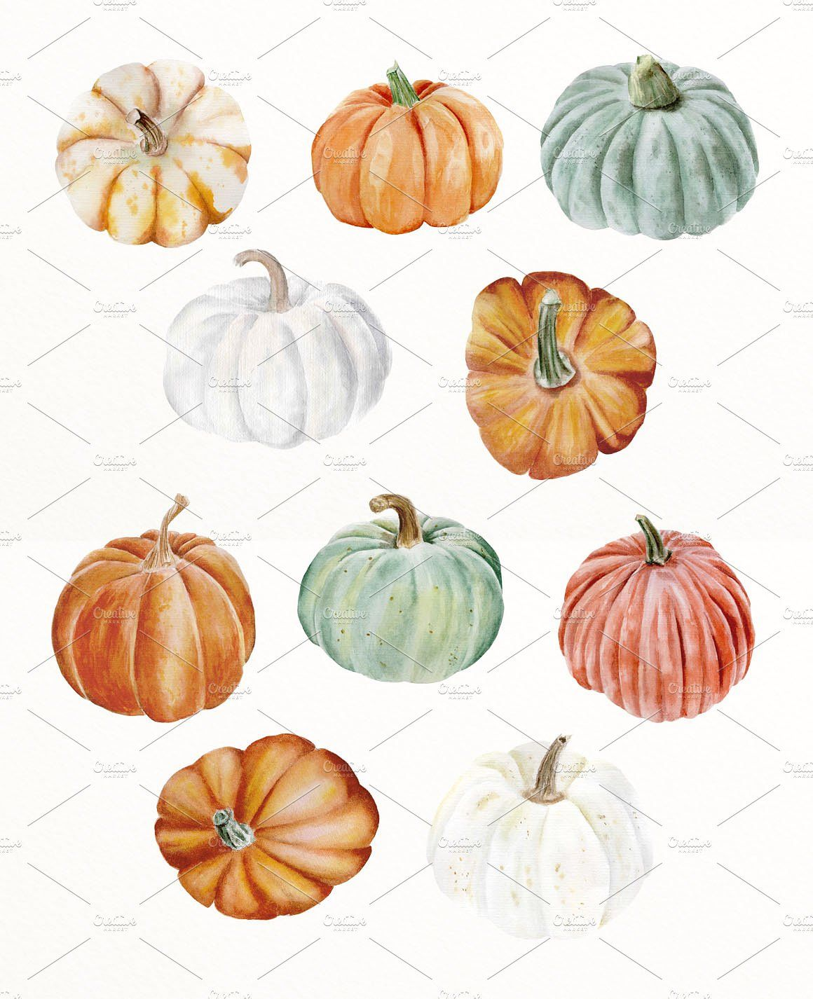 Autumn Pumpkin Watercolor Clip Art Fall Illustration Art