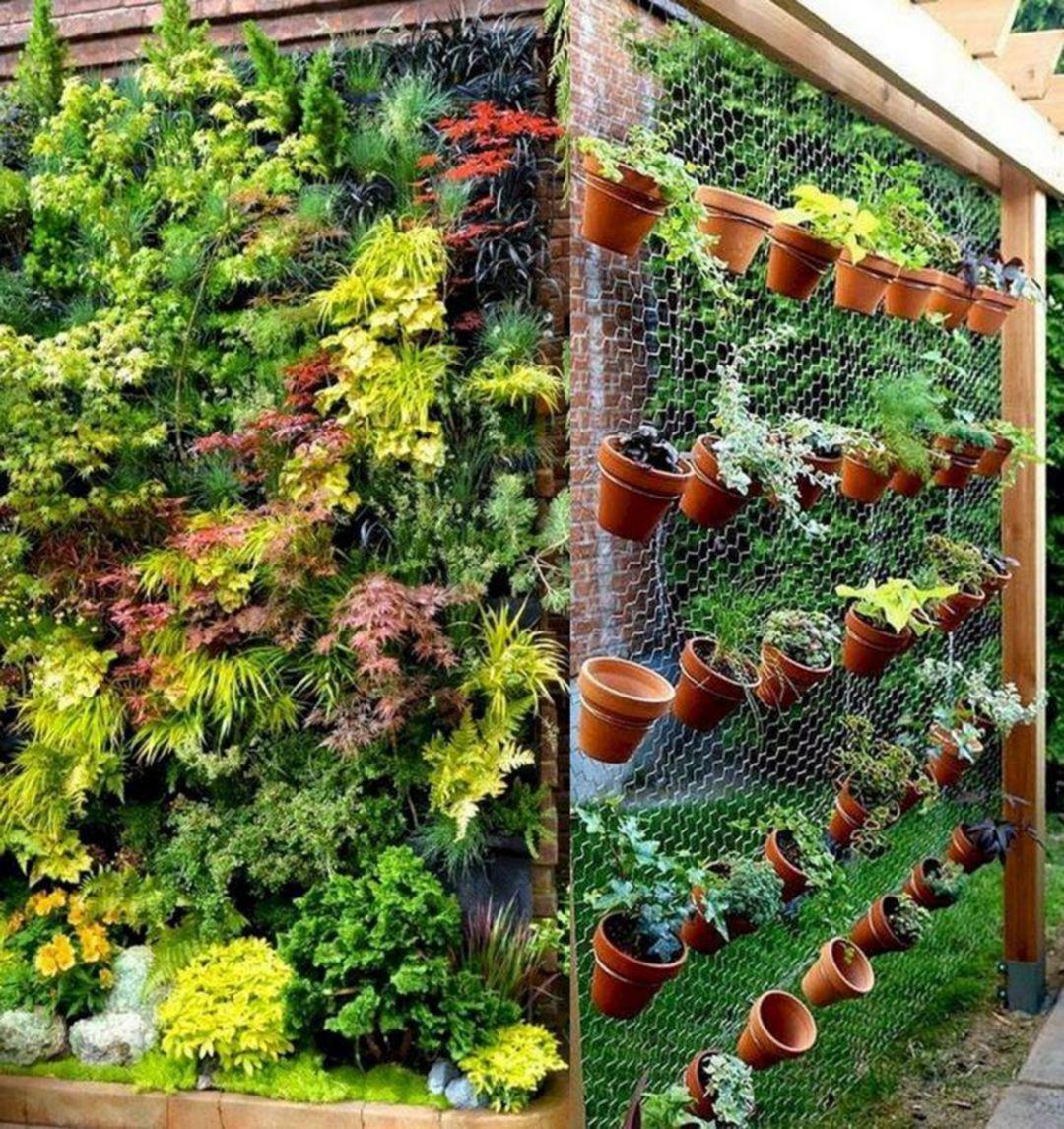 20 Amazing Vertical Garden Ideas To Beautify Your Home Ideas Https Pistoncars Com 20 Amazing Verti Vertical Garden Diy Vertical Garden Vertical Garden Indoor