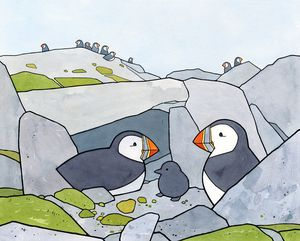 Puffin Burrow illustration