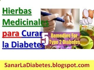 Hierbas Medicinales para Curar la Diabetes: Plantas Naturales para Diabéticos Las hierbas probadas como medicamentos naturales para diabéticos. ¿Estás sufriendo de la diabetes? El uso de hierbas para el tratamiento de la diabetes no es una nueva opción para el tratamiento de la diabetes.