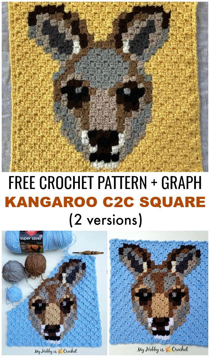 Kangaroo C2C Square: Free Crochet Pattern + Graphs (2 versions) | Wildlife Graphghan CAL