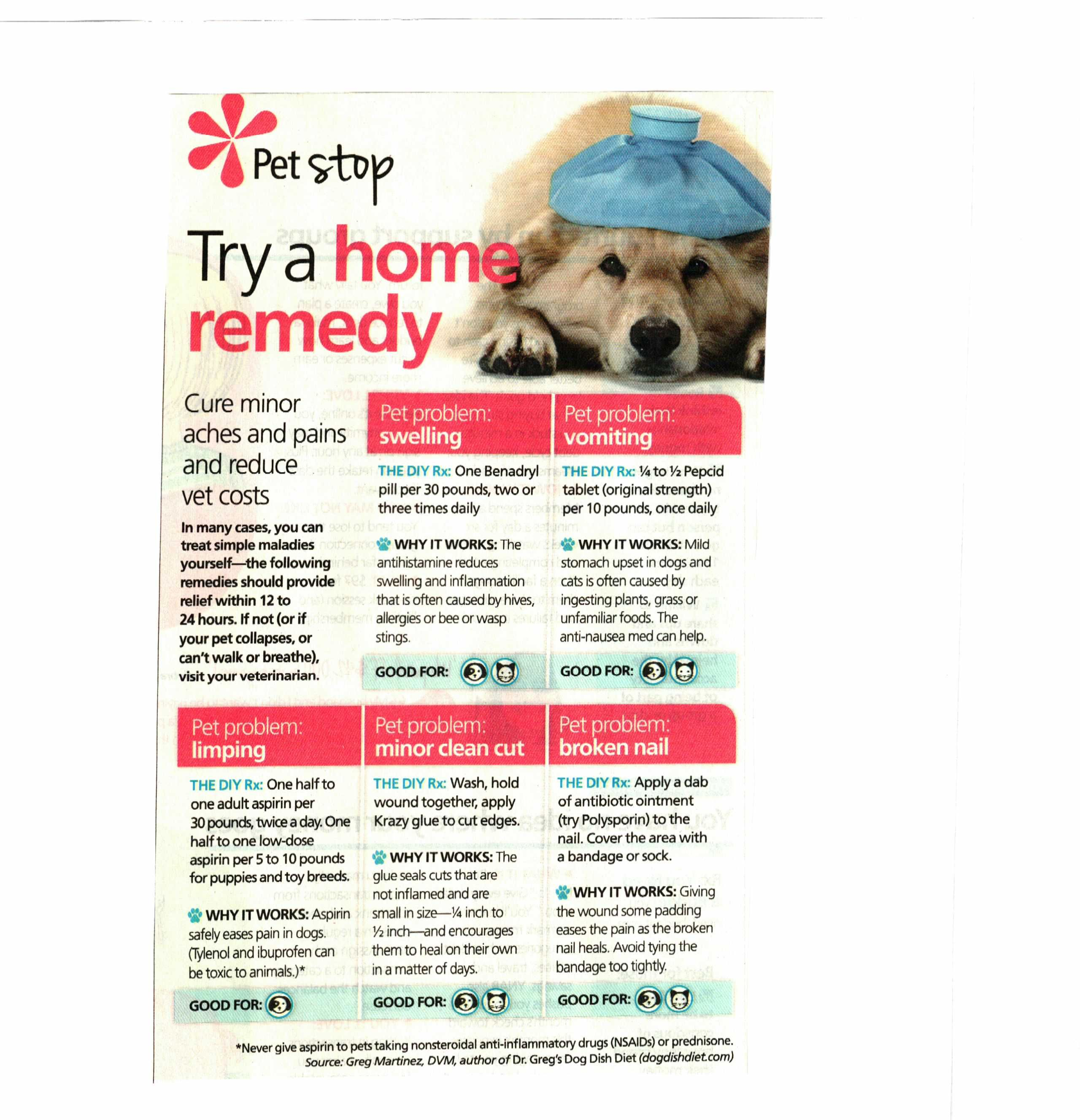 Home Remedies for Pets Home remedies, Vet costs, Remedies