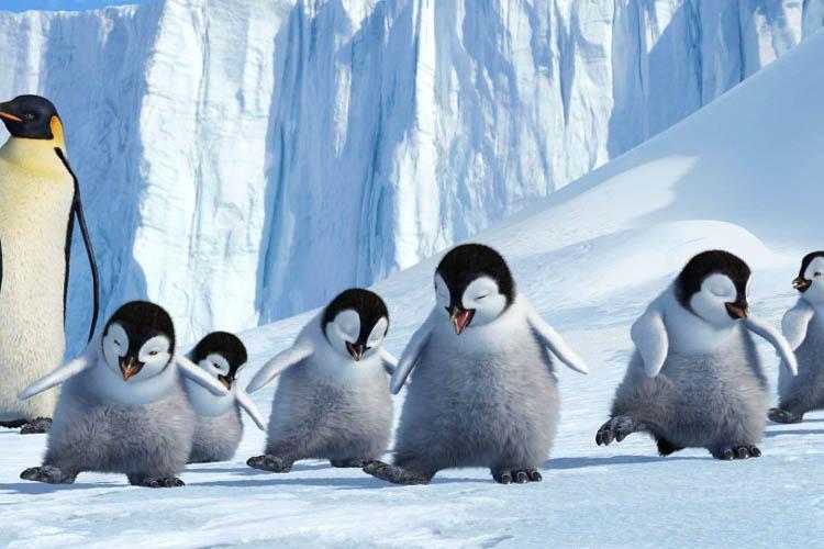 Happy Feet 2006 Penguin Quotes Disney Quotes Happy Feet