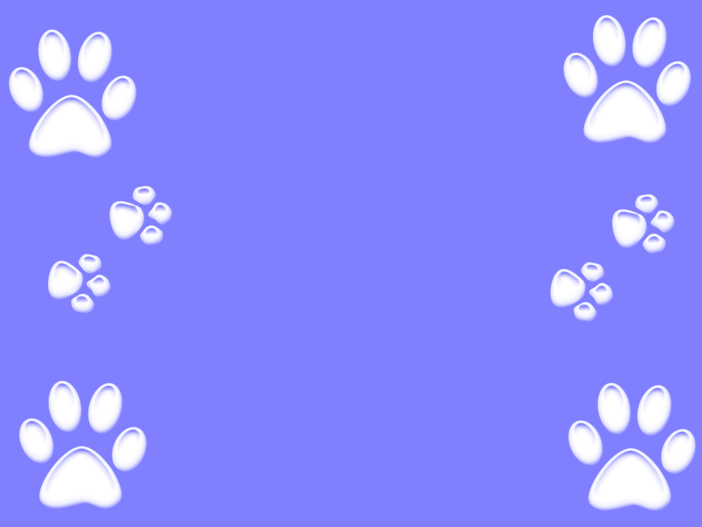 paw background - Google Search | ideas for mancsok website ...