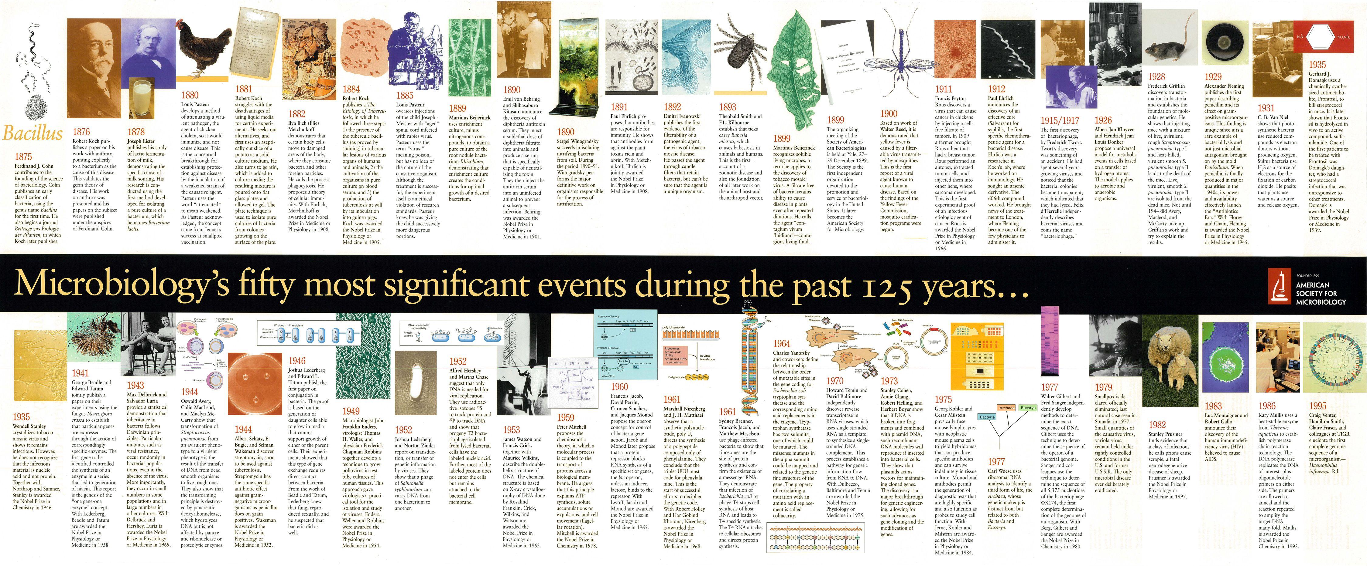 World History Online navigates through 3 000 years of world ...