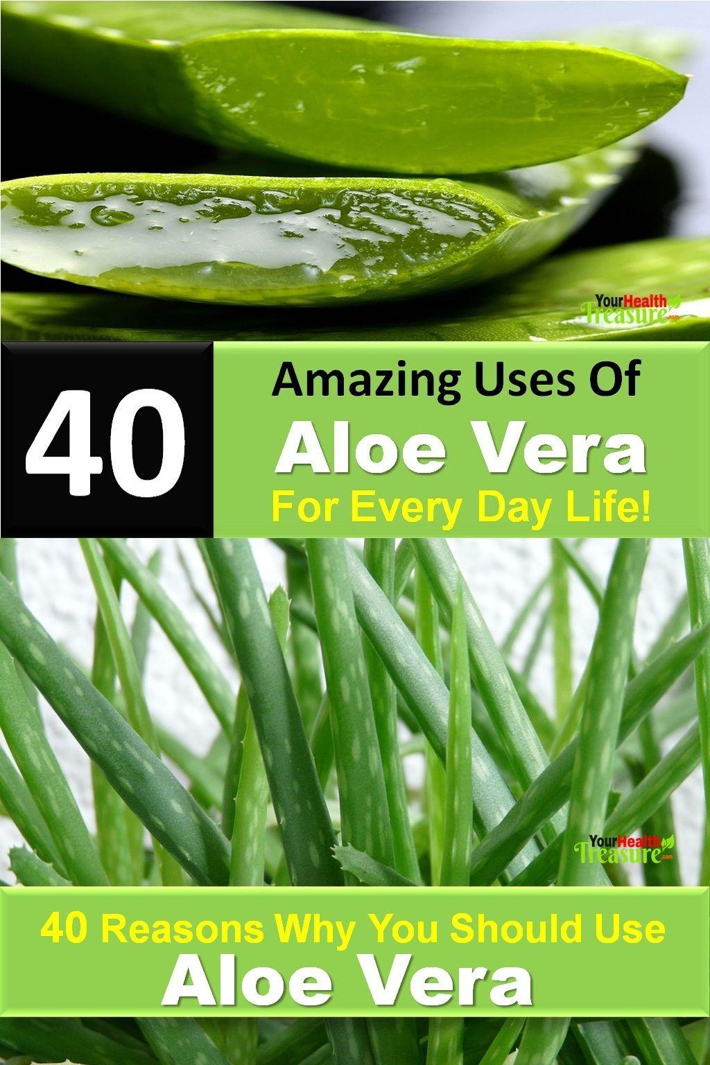 aloe vera fördelar
