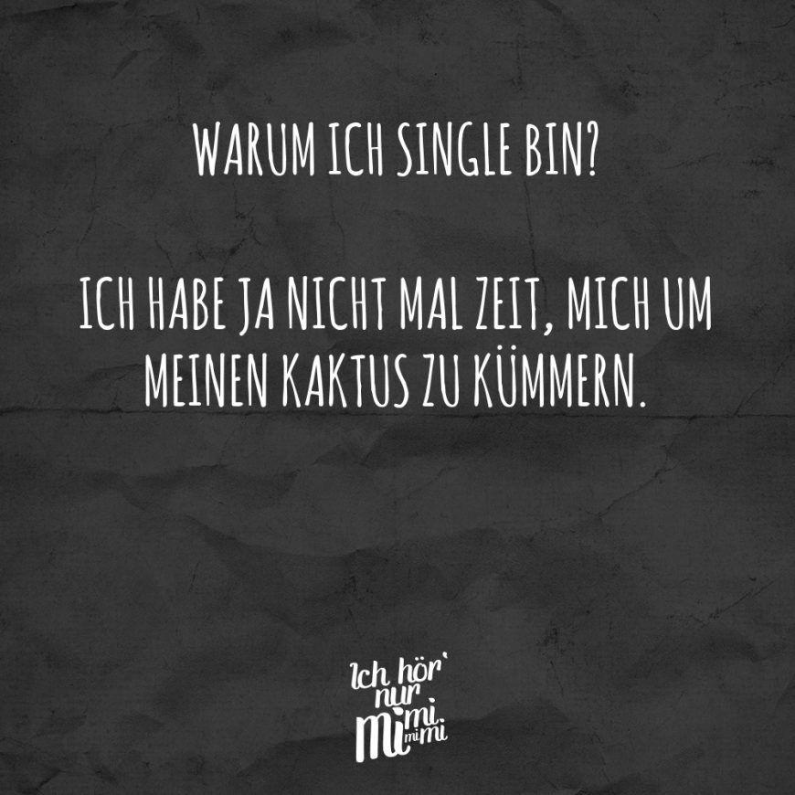 Warum ich single bin? Ich habe ja nicht mal Zeit, mich um