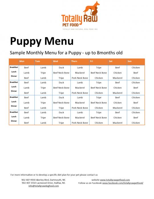 Puppy Menu For Website Raw Dog Food Recipes Raw Dog Food Diet Raw Feeding For Dogs