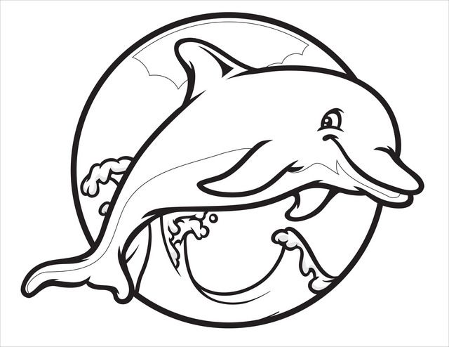 Dolphins Picture To Color