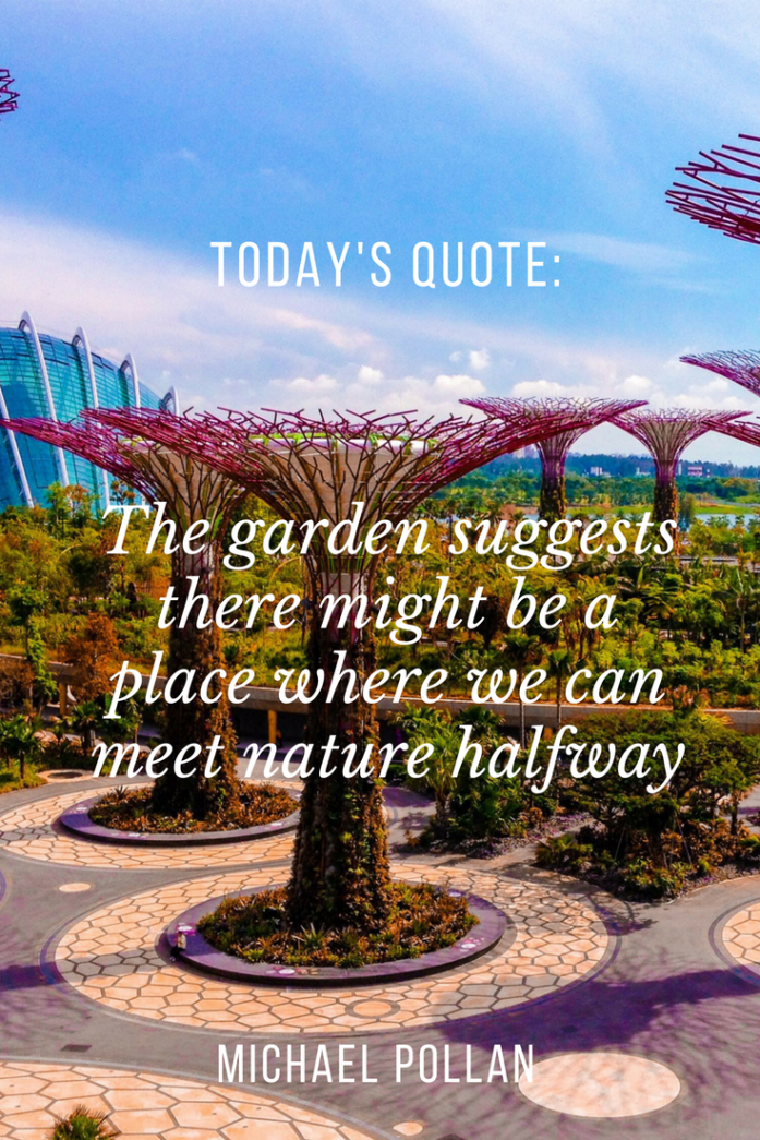 855e5cfc8b7b8572592a53e720048163 - How To Visit Gardens By The Bay