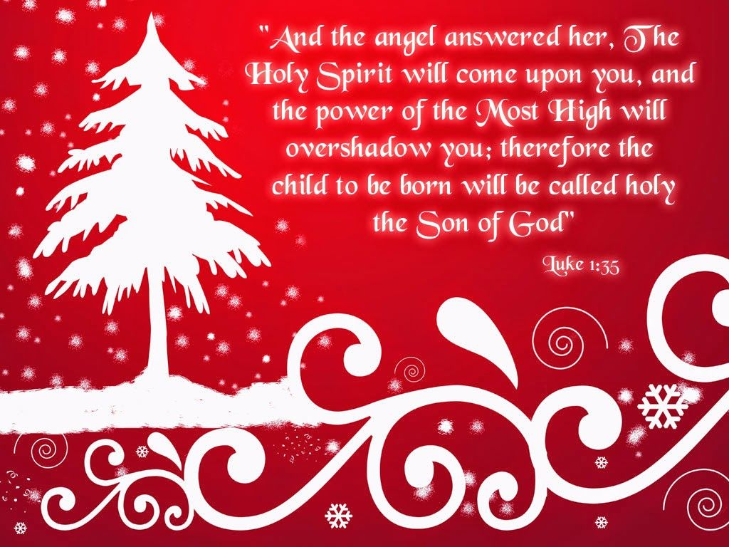 Religious Christmas Quotes Mesmerizing Top Most Christmas Card Quotes  Inspirational Religious Christmas . Design Ideas