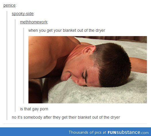 855ec9fb6f189f0e8d9432ad9a941a6c nothing like a clean blanket blanket, memes and humor