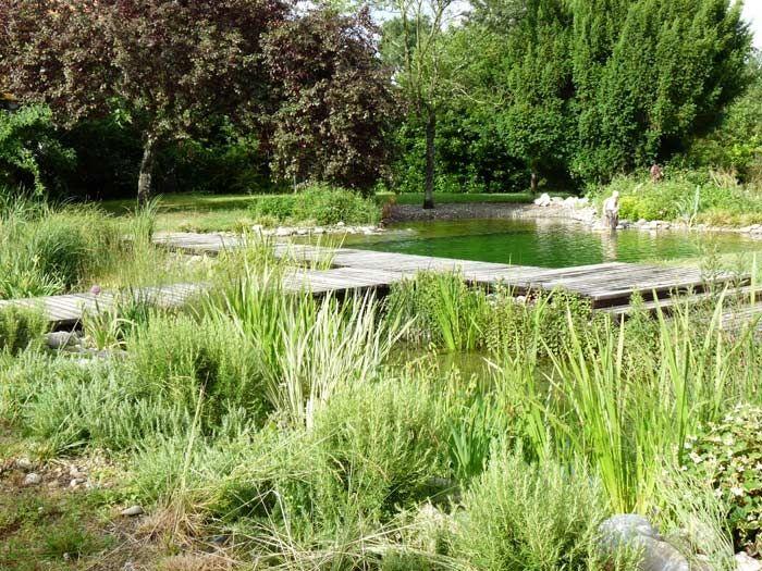 piscine naturelle en Haute Garonne Design__Swimming Pool