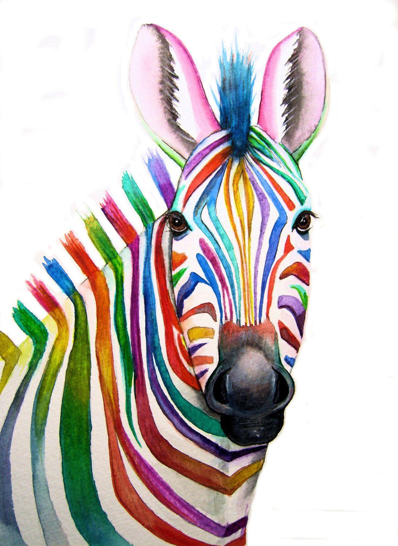 Colourful ZEBRA Art Signed Print from an original watercolour ...