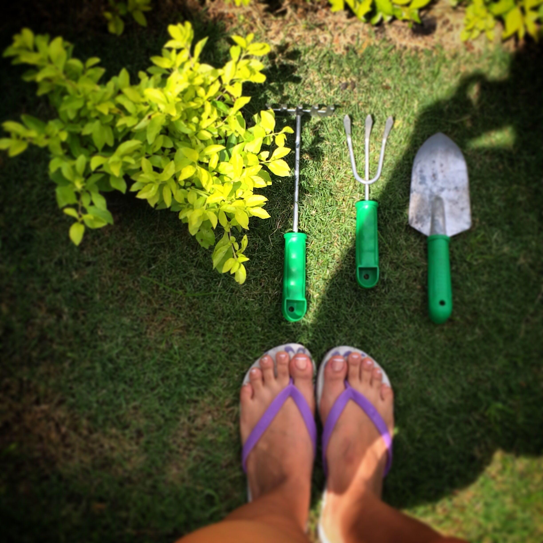 Consintiendo mi jardín!