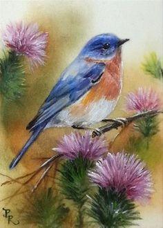 Daily Paintworks Bluebird Thistles By Paulie Rollins Watercolor Bird Birds Painting Bird Art