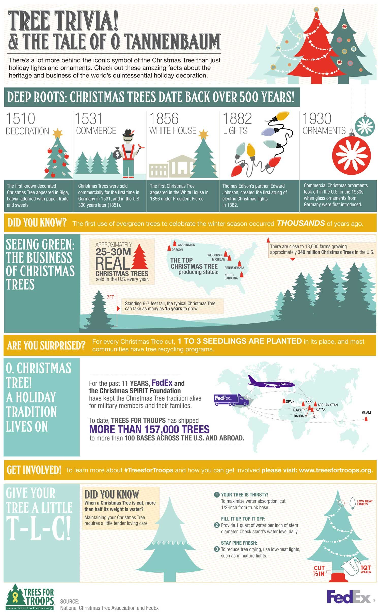 The Tale of O Tannenbaum: Christmas Tree Infographic | xmas past ...