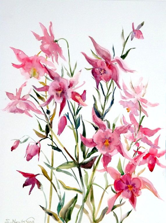 Columbines original large watercolor painting 20 X by ORIGINALONLY