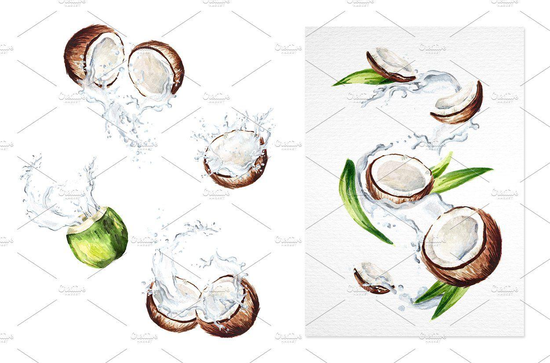 Coconut Watercolor Collection Graphic Design Logo Create