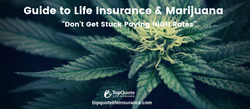 Pin By Top Quote Life Insurance On Best Life Insurance Companies