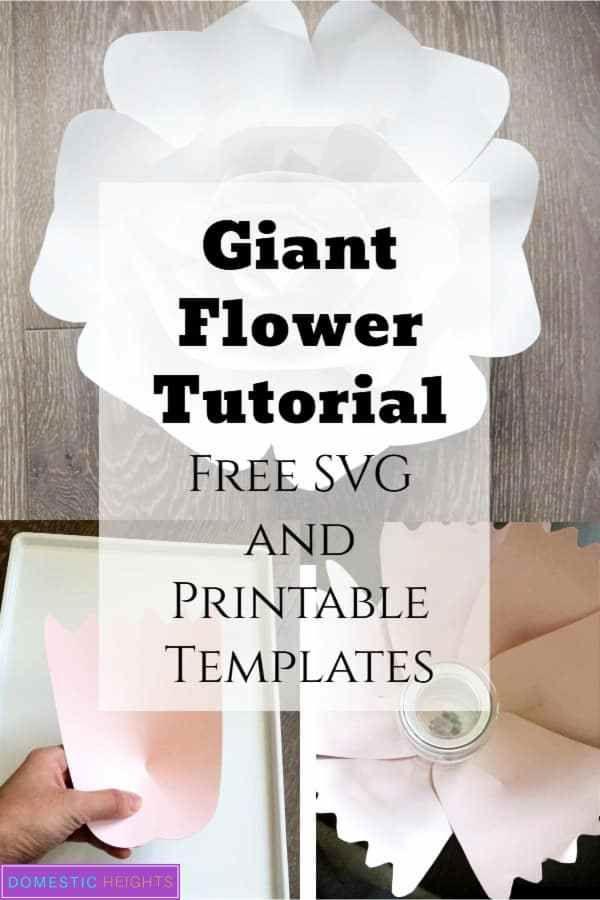 Large Paper Flower Set #giantpaperflowers