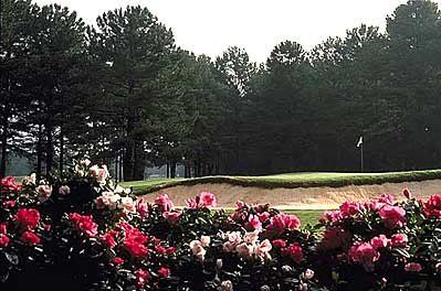 8561f7d9f105be476c565f3dcc2985bc - Lake View Golf Course Callaway Gardens