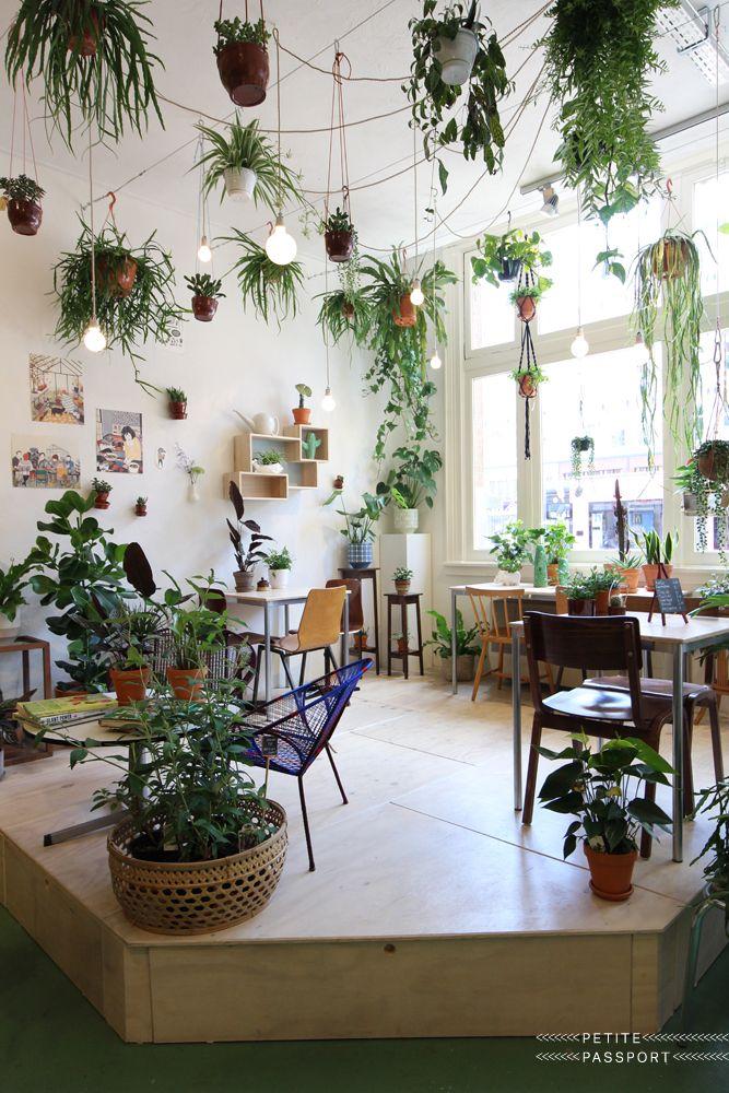 plantes vertes luminaires maison pinterest maison jardins et jardin d 39 hiver. Black Bedroom Furniture Sets. Home Design Ideas