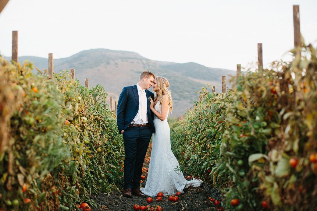 Bride And Groom In Tomato Vines Camarillo Wedding At Maravilla Gardens Photographed By The Sanadas Formerly Marianne Wilson Pho Camarillo Wedding Photography