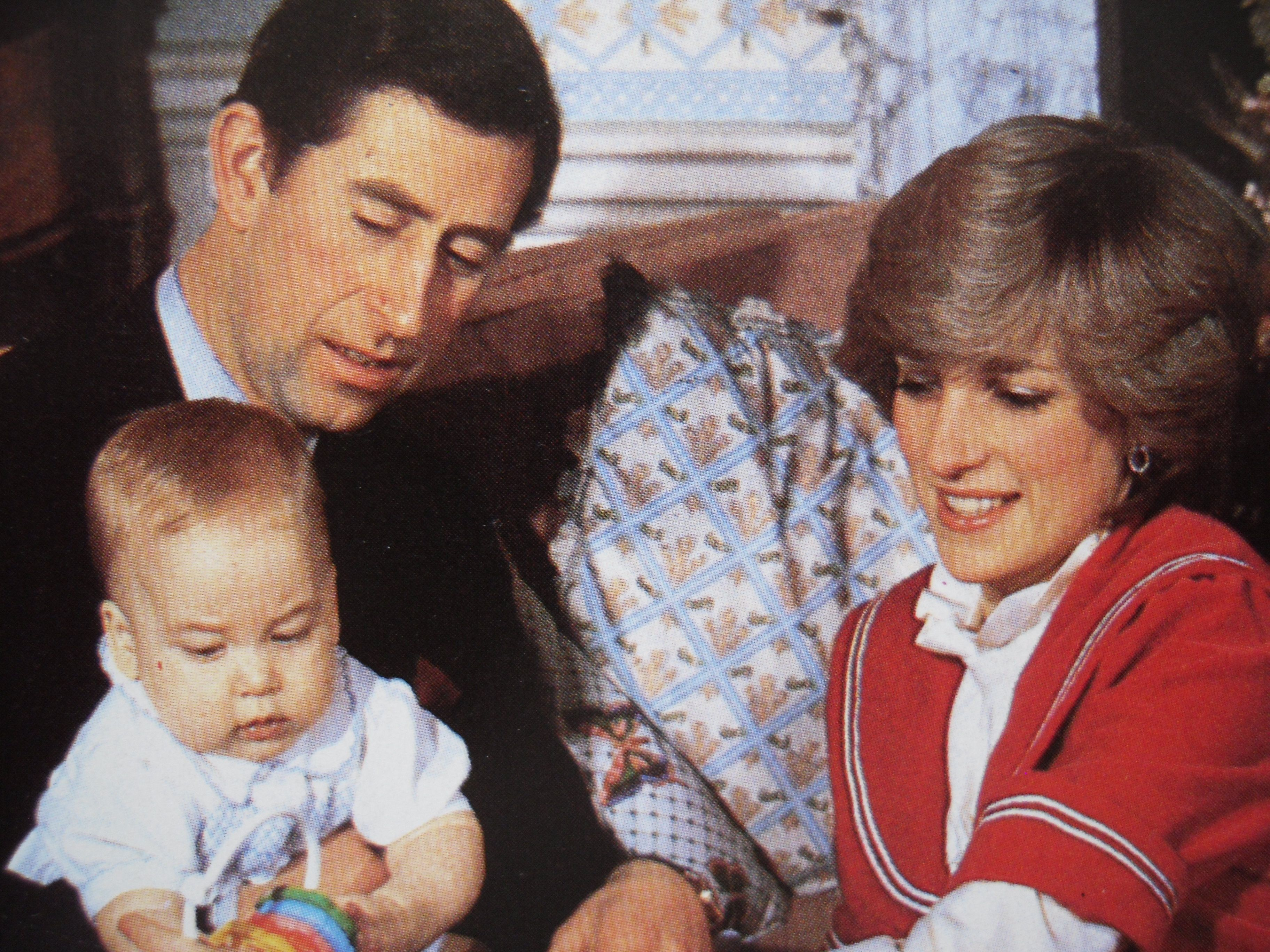 Charles & Diana & William