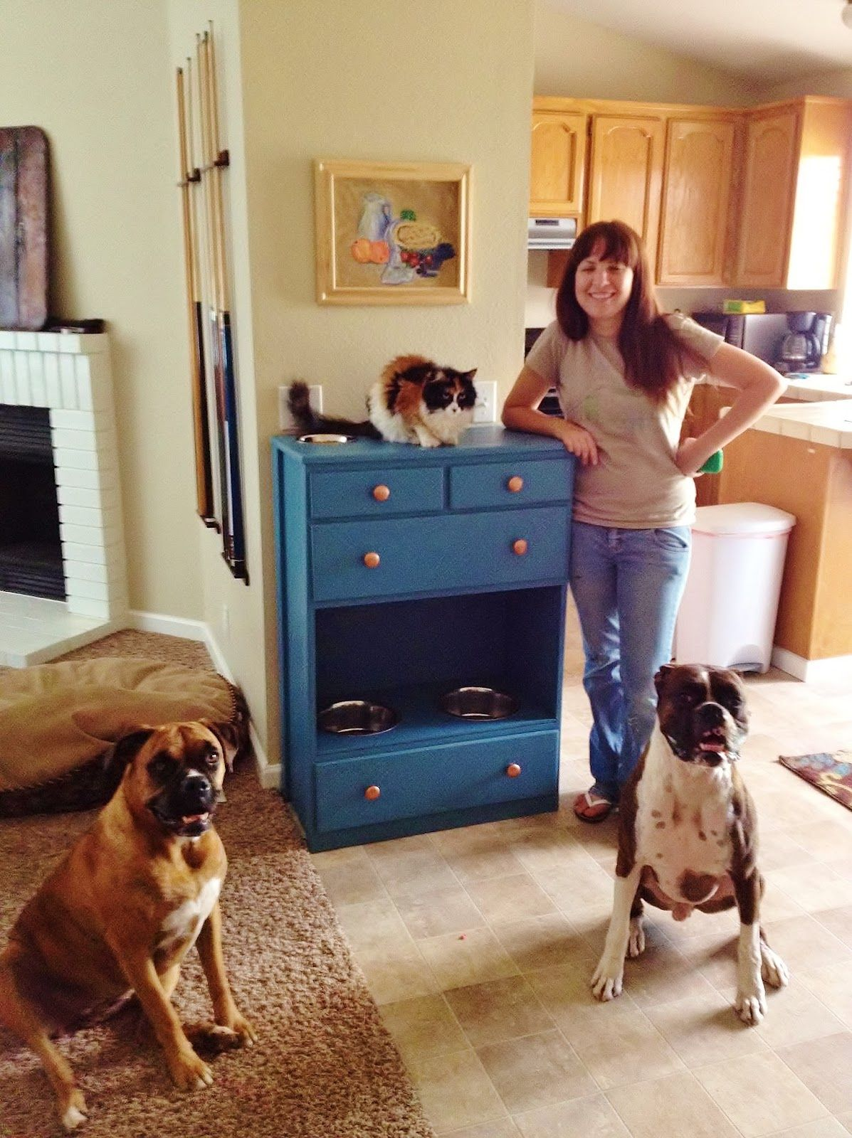 I have an old dresser; therefore, I have a pet station!! 1