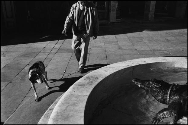Richard Kalvar FRANCE. Languedoc-Roussillon. Nîmes. Crocodile at a fountain. 1989.