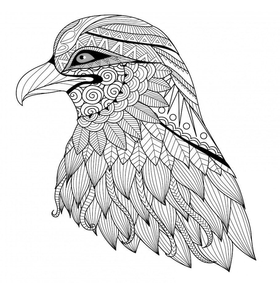 Eagle Head Doodle Doodle Is Art Bird Coloring Pages Free Coloring Pages Animal Coloring Pages