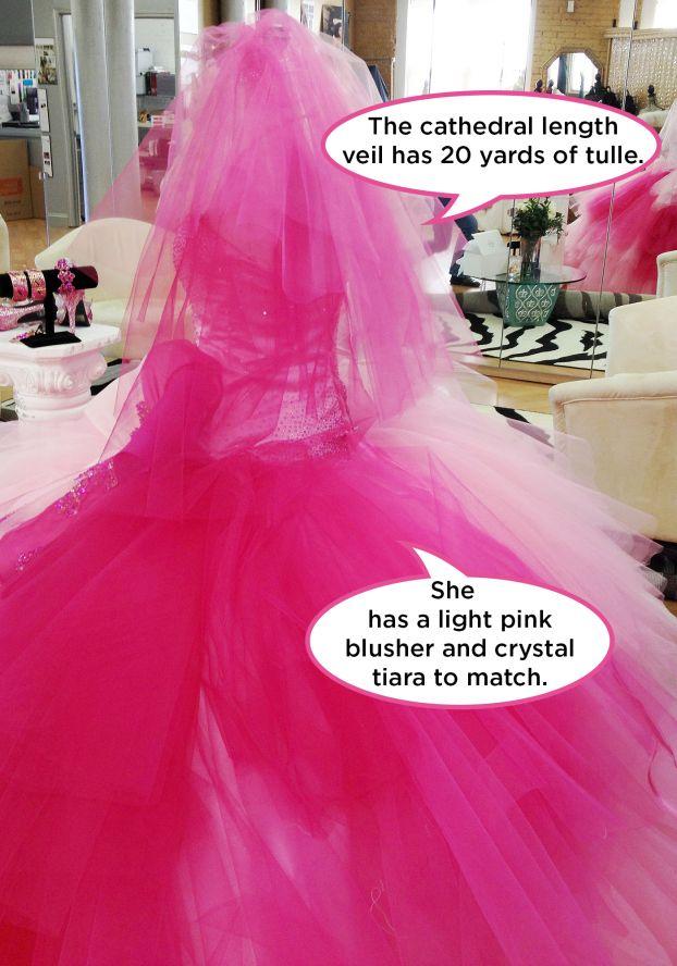 Alyssa\'s Bridal Bling Pop-Up Pictures: Photos: TLC #MBFAGW | My Big ...