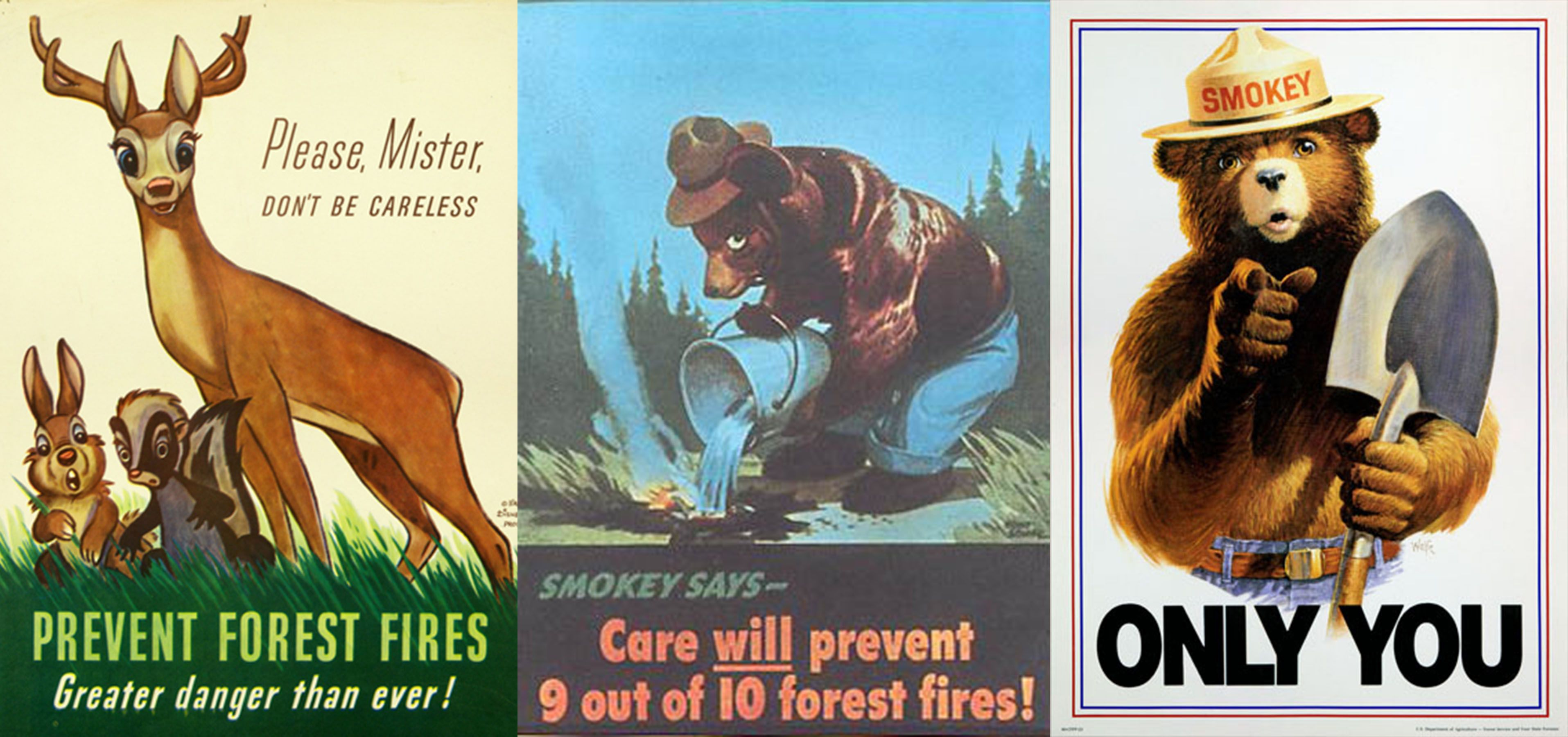 The National Campaign To Reduce Forest Fires Included Disney S
