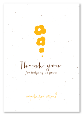 Thank You Notes On Seeded Paper