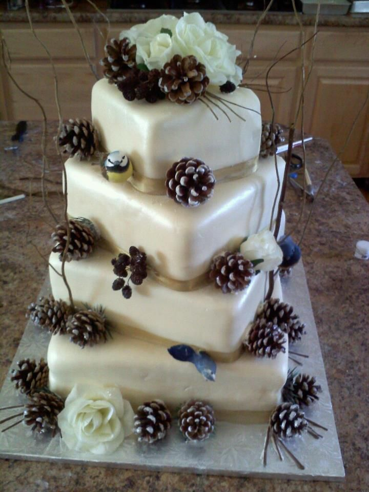 Pine Cones Jill Roth Cake Just Dreaming Pinterest