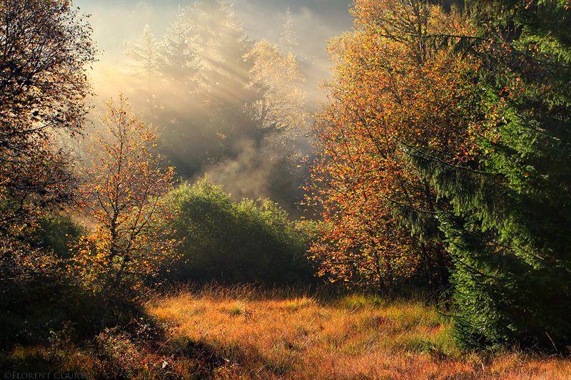 Peaceful Autumn Symphony by FlorentCourty on DeviantArt