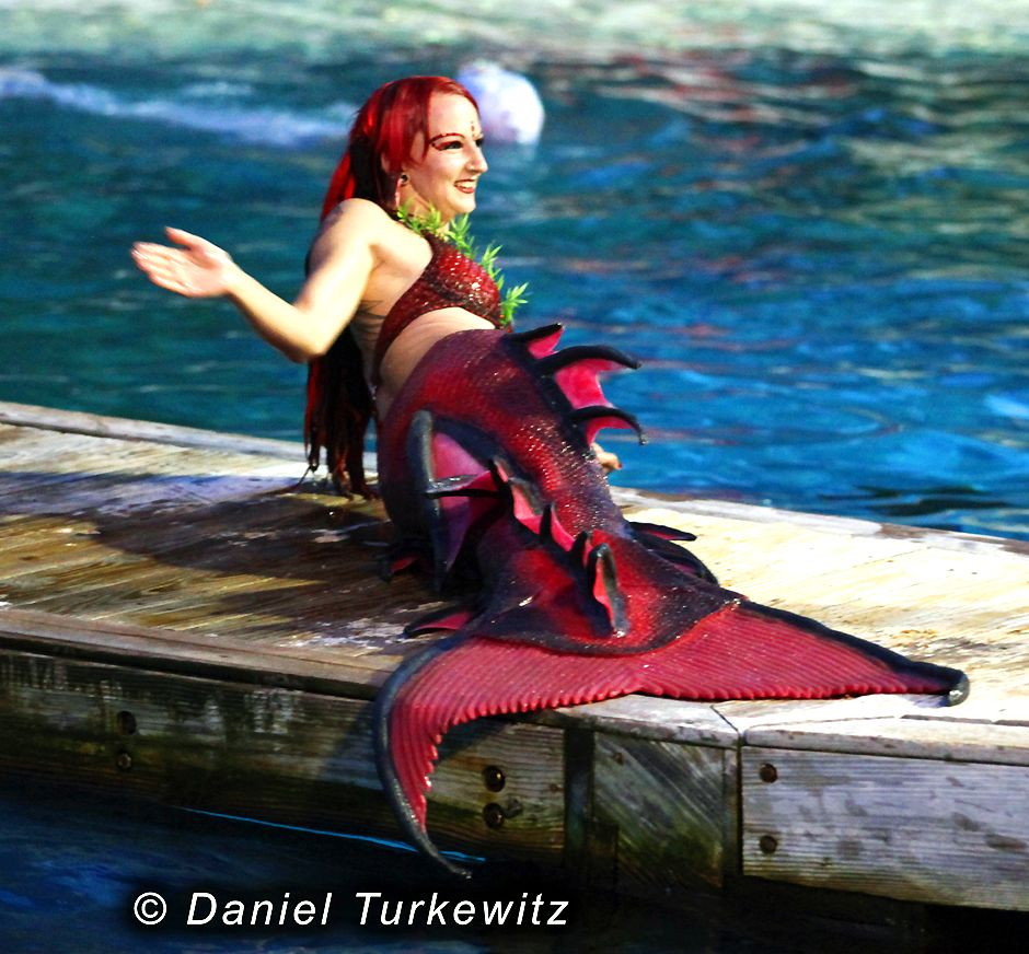 Silicone Mermaid Tail Real
