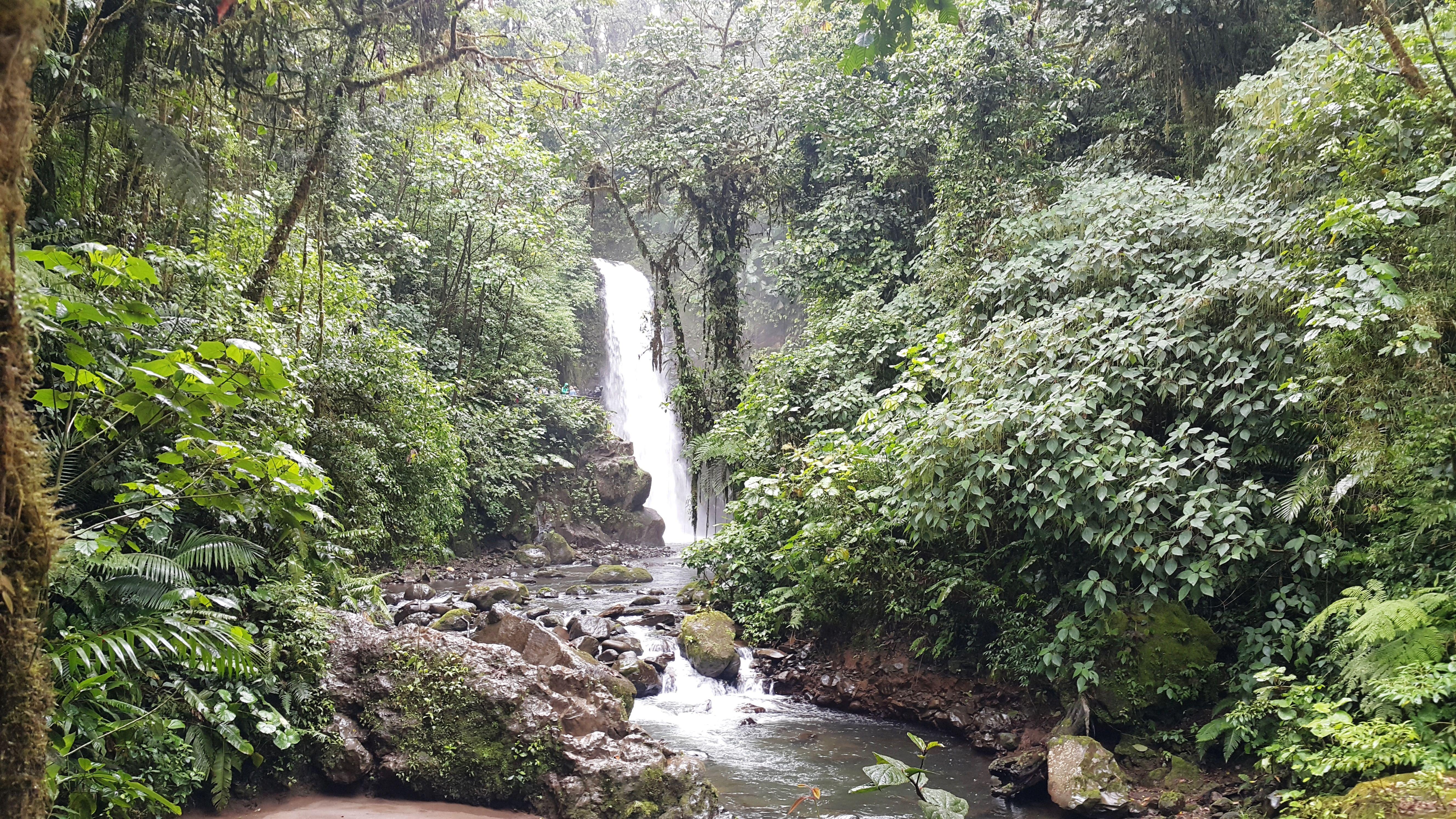 856780c4db3e91e595cc07a6158e3499 - La Paz Waterfall Gardens Tour From San Jose