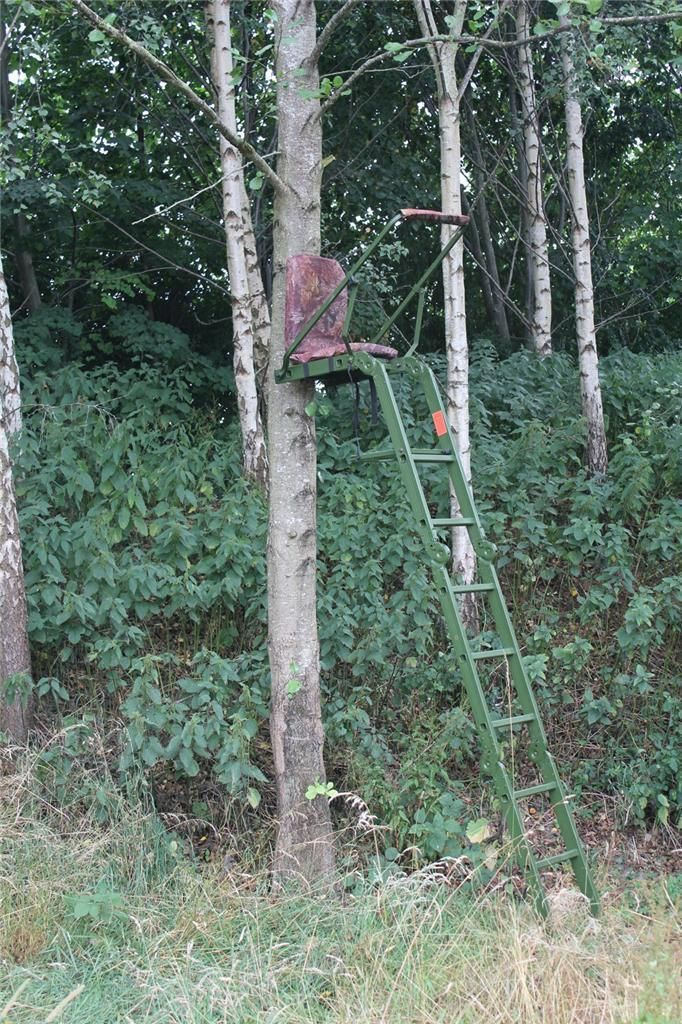 Pin on Tree stands