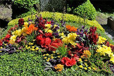 Sommerbepflanzung