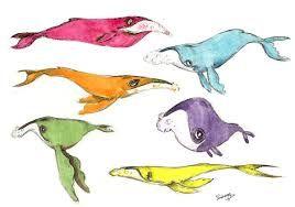 humpback whale drawing에 대한 이미지 검색결과