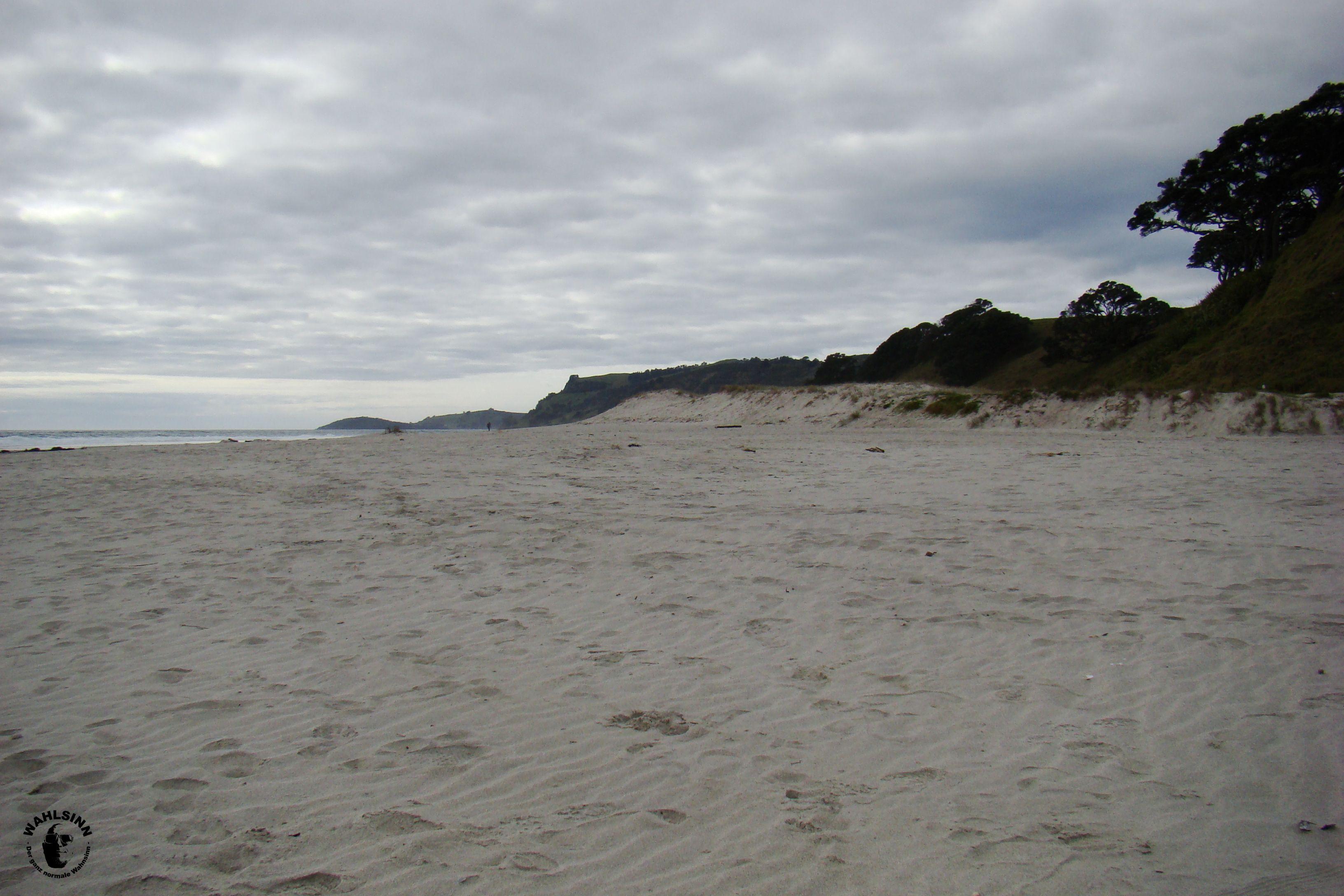 Neuseeland - Pakiri Beach