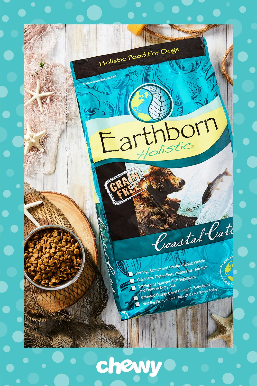 Earthborn Holistic Coastal Catch Grain Free Natural Dry Dog Food 28 Lb Bag Chewy Com Grain Free Holistic Recipes Dog Food Recipes