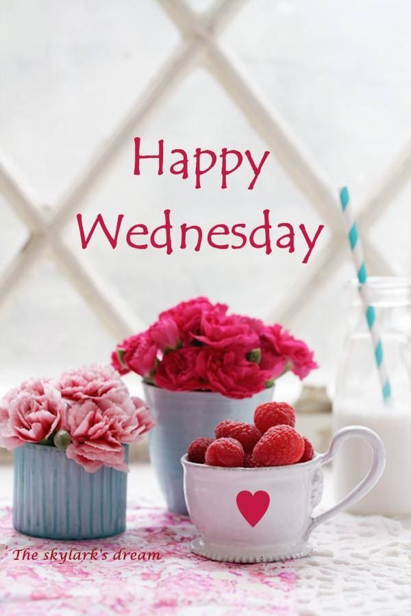 Happy Wednesday wednesday hump day wednesday quotes happy wednesday wednesday quote happy wednesday quotes