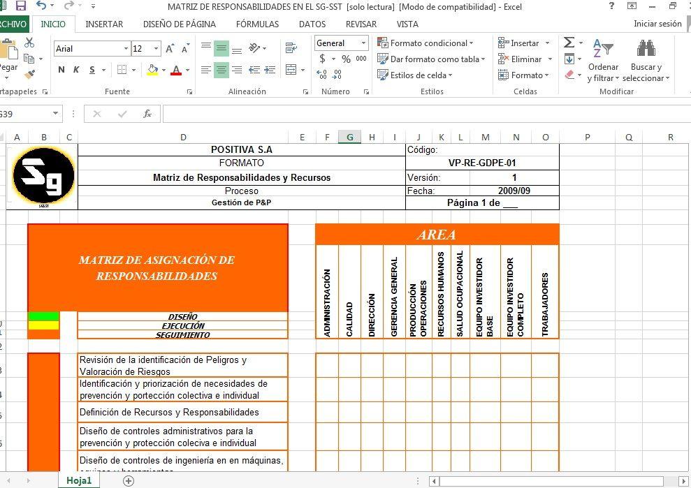 Matriz de Responsabilidades y Recursos | SGSST- COL | Pinterest ...