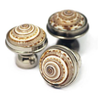 Sundial Shell cabinet knobs. Polished nickel finish, solid brass ...